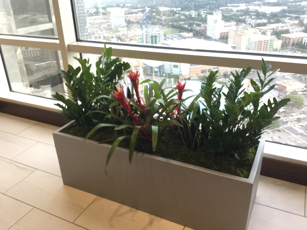 Planters specified by IIS provided by Architectural Supplements.