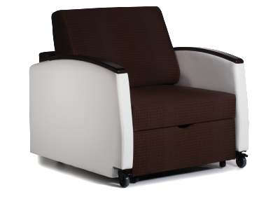 La Z Boy Odeon Sleep Chair 1